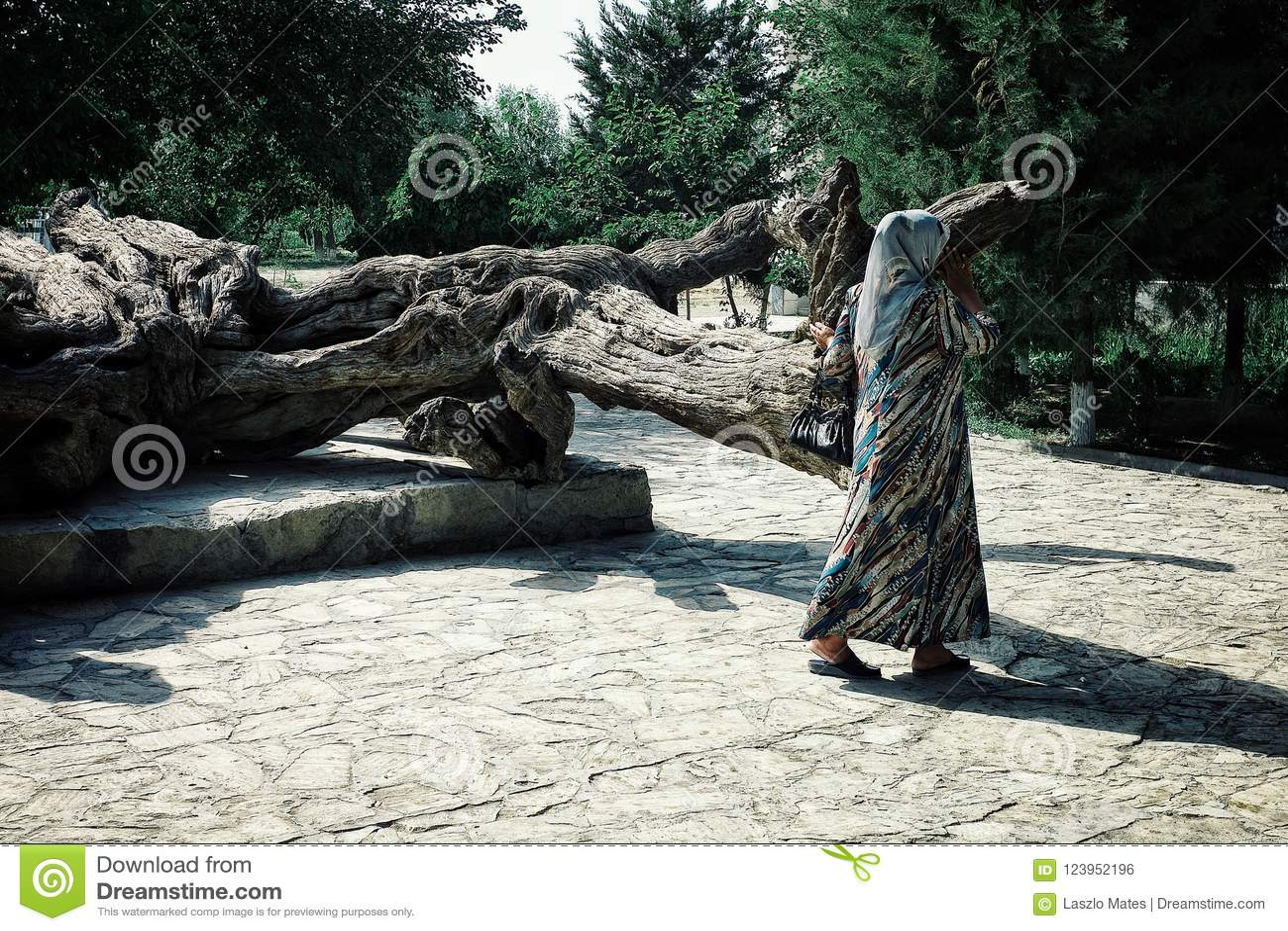 Schrein von Nashqabandi mit einer Pilgerdame, die um den legendären Baum einkreist