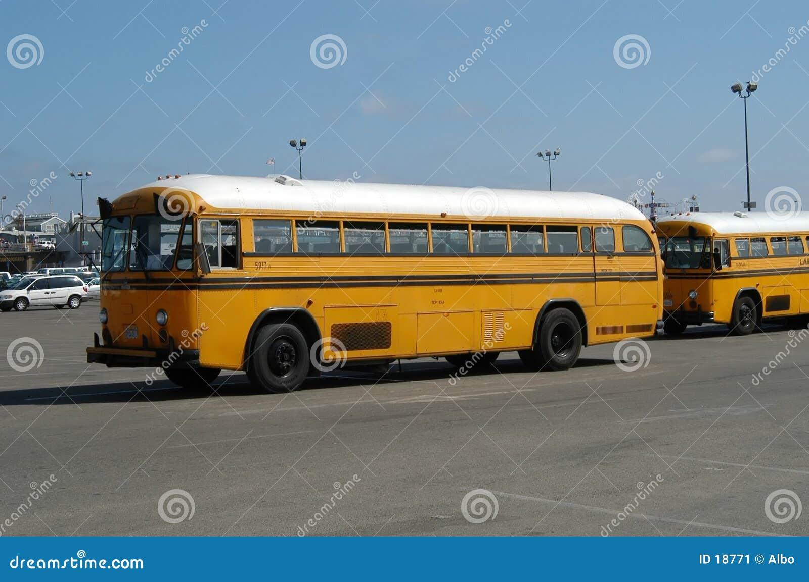 Schule-Busse
