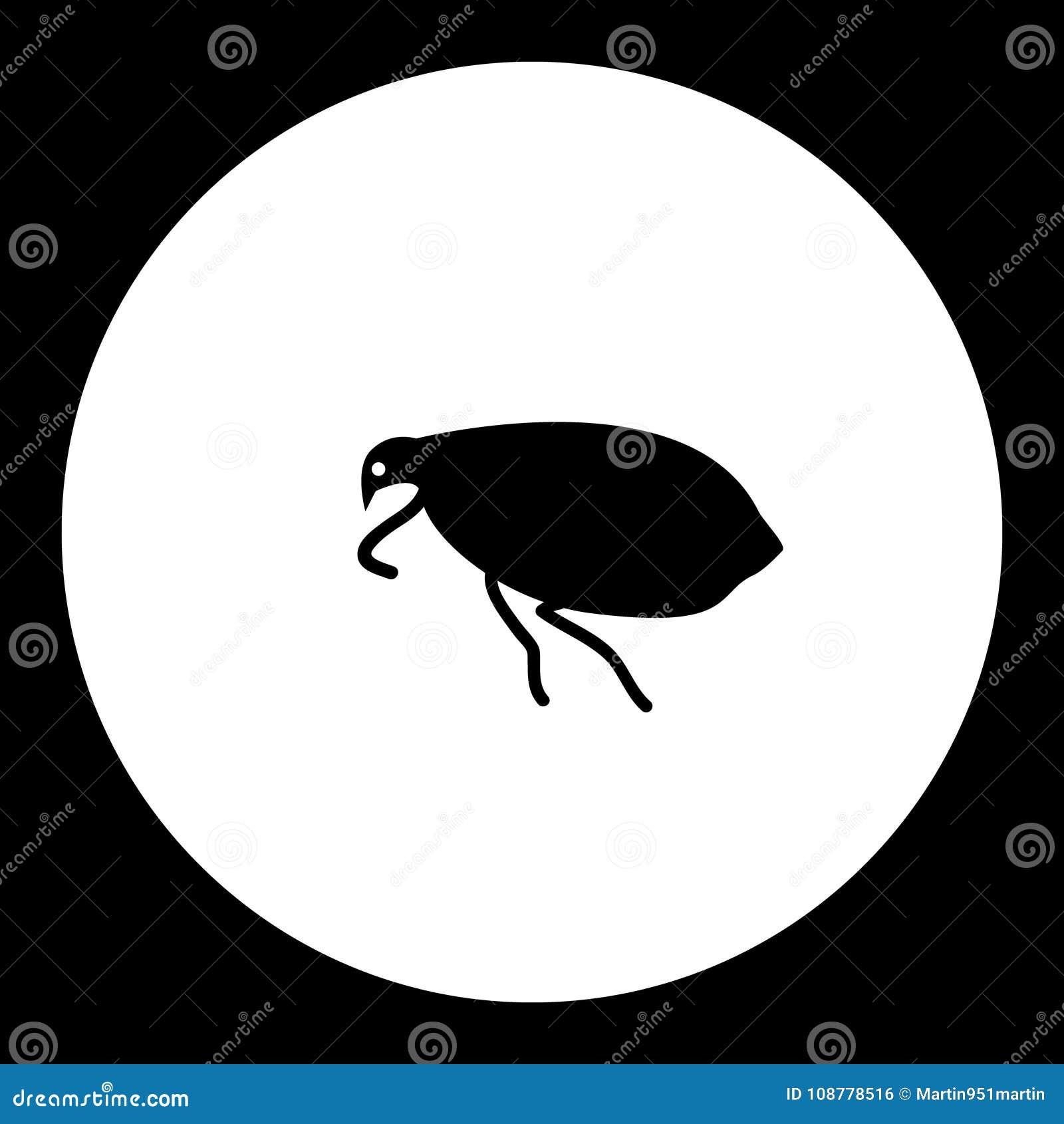 Schwarze Des Flohinsekts Einfache Und Grune Ikone Vektor Abbildung