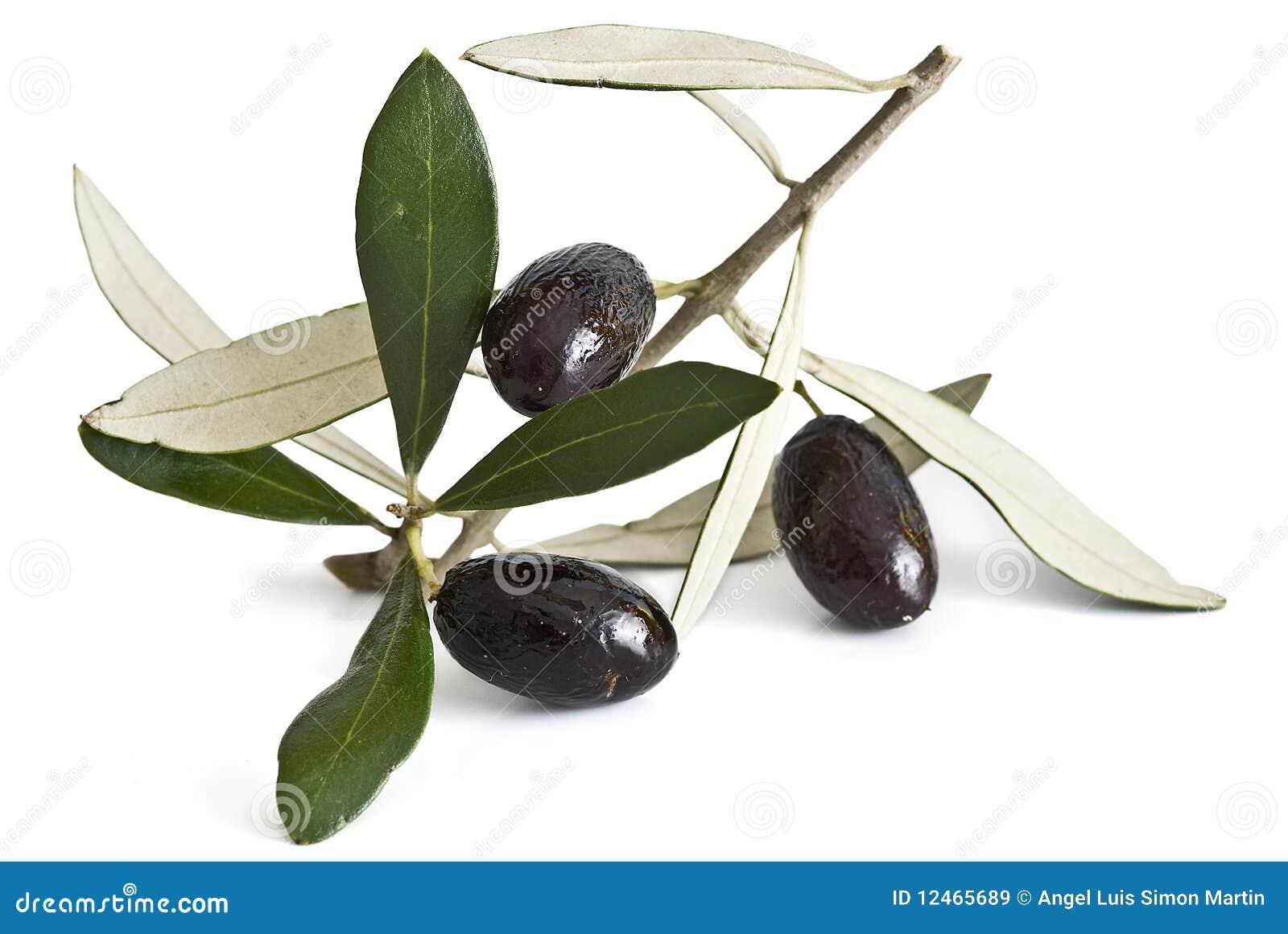 Schwarze Oliven.