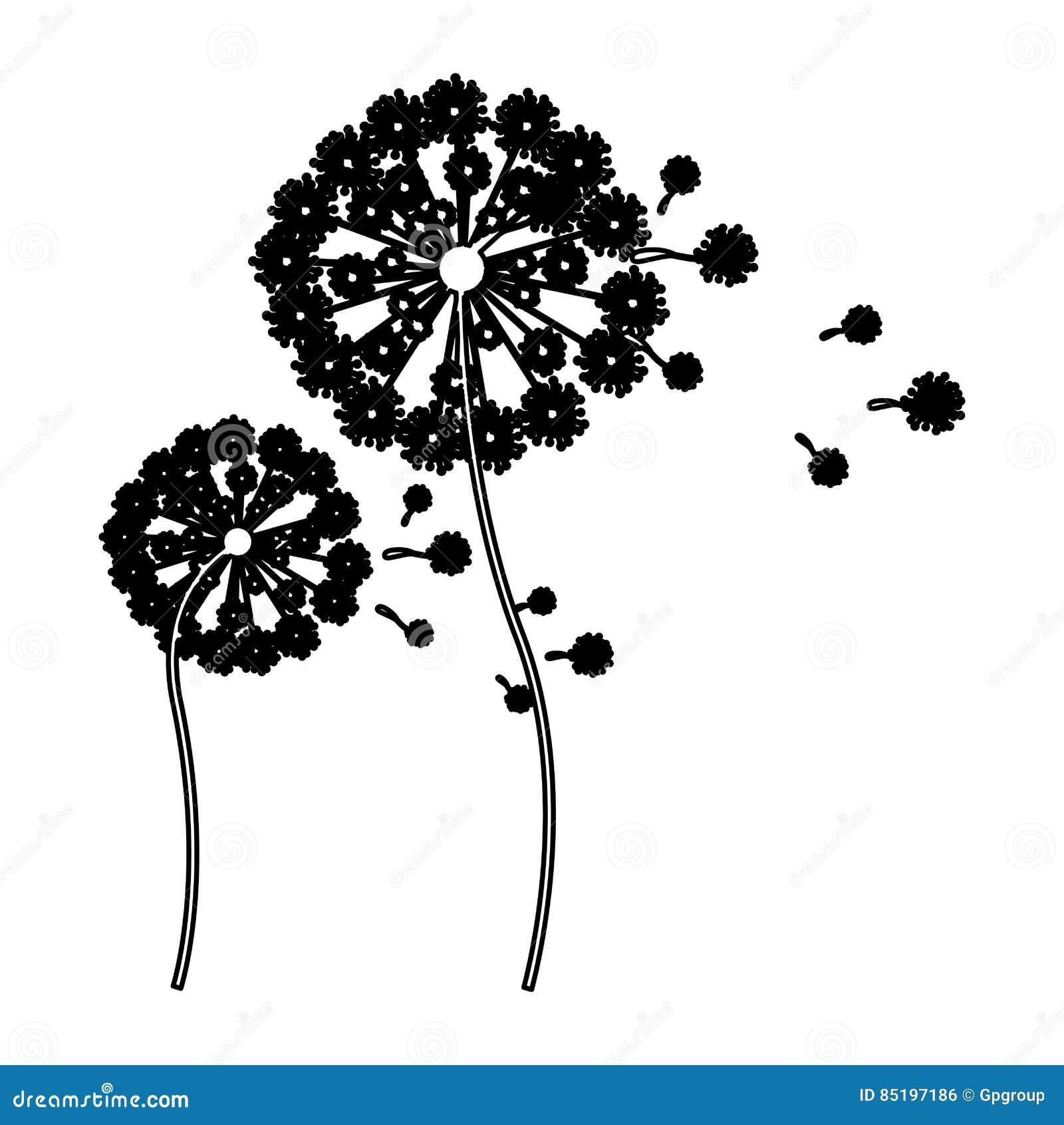 Schwarzer Schattenbildlöwenzahn mit den Stamm- und Stempel- und Fliegenblumenblättern