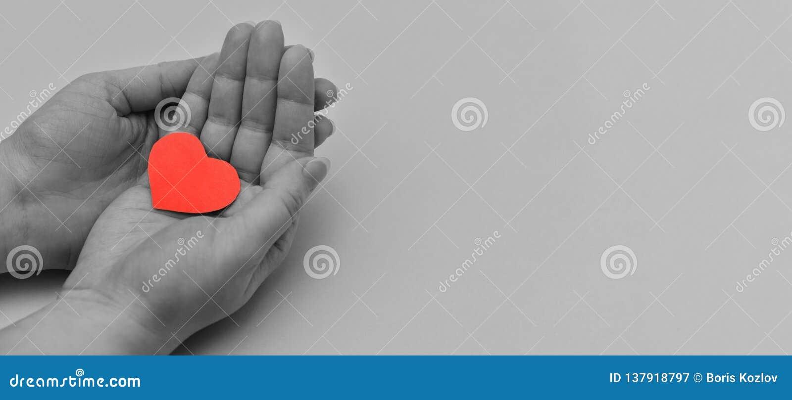 Schwarzweiss-Foto mit den Händen der Frauen, die ein farbiges rotes Herz halten fahne Fragment der Hände Frauen