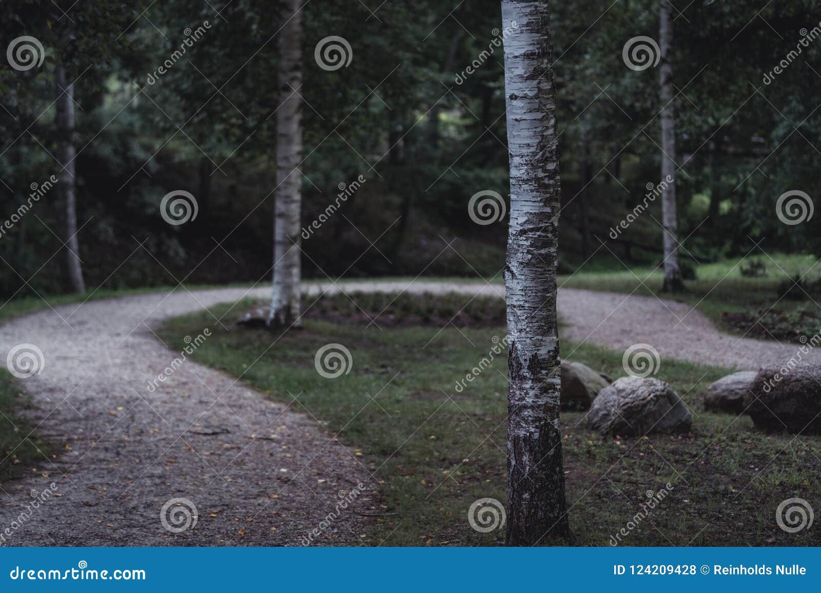 Schwermütiges Foto der Straße in einem Park, zwischen dem Holz - Desaturated,