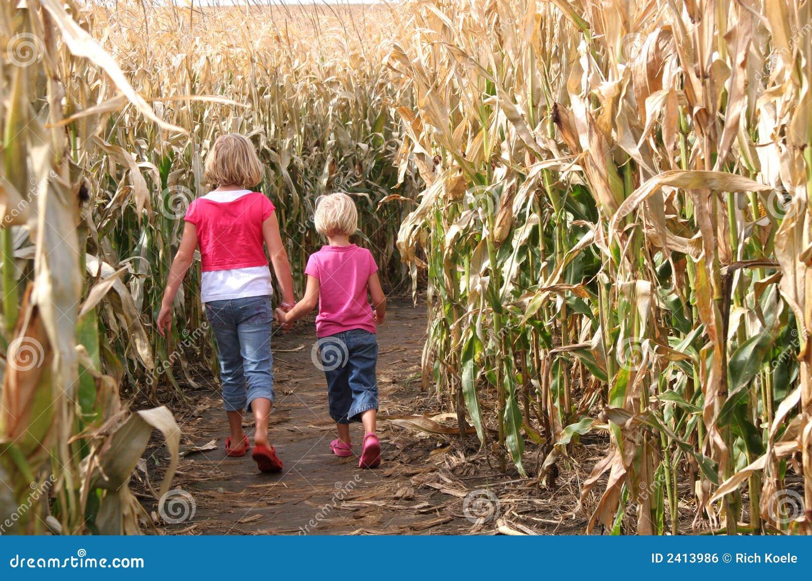 Schwestern und ein Mais-Labyrinth