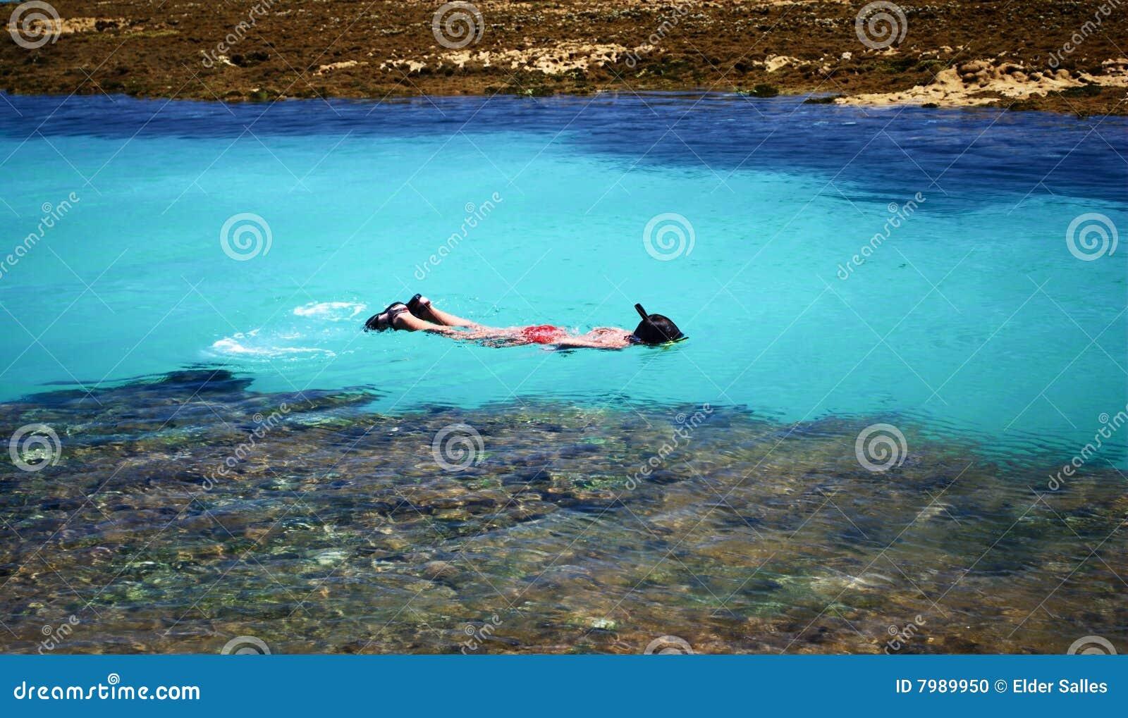 Schwimmen im kristallenen freien Meer