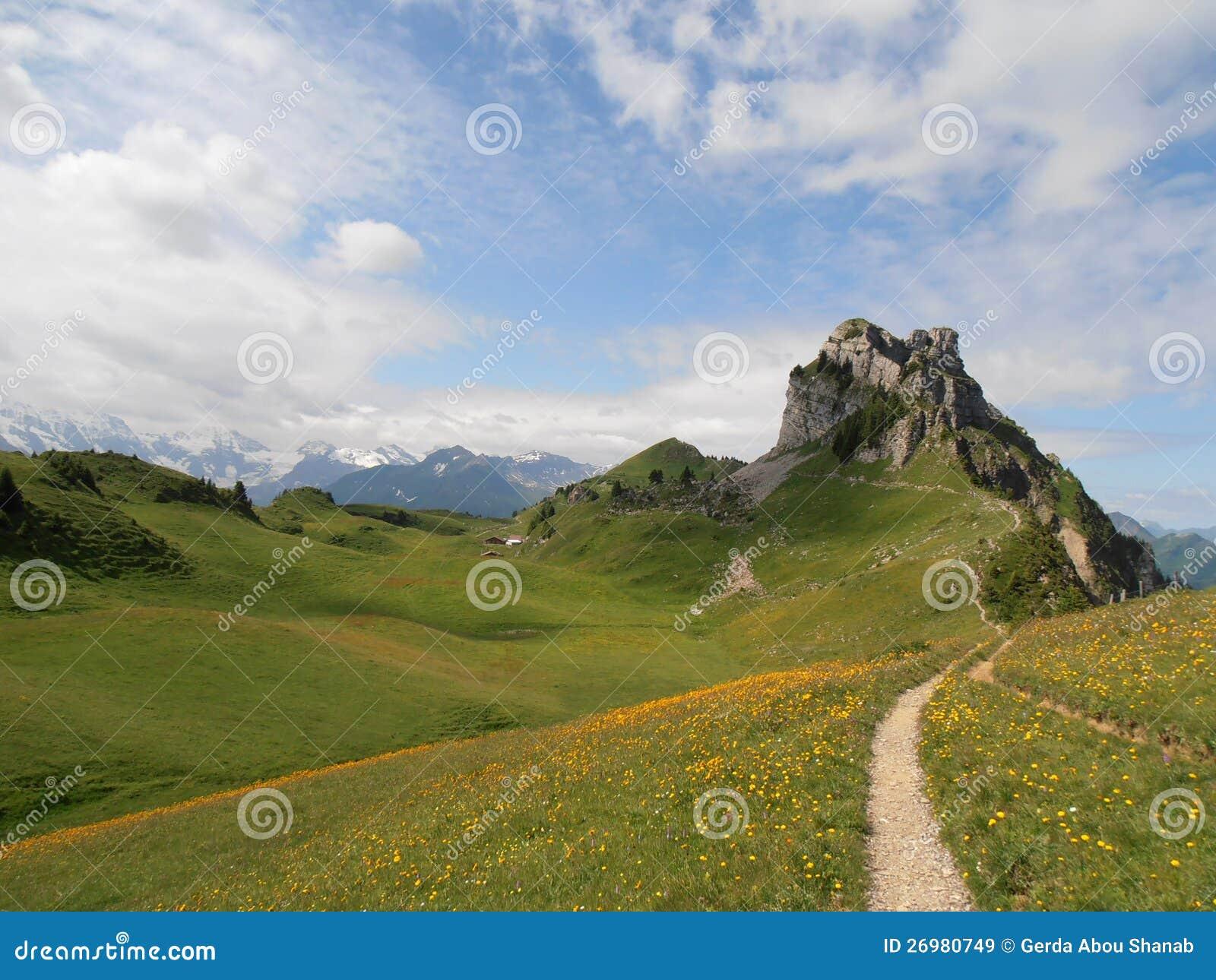 Schynige Platte die Schweiz