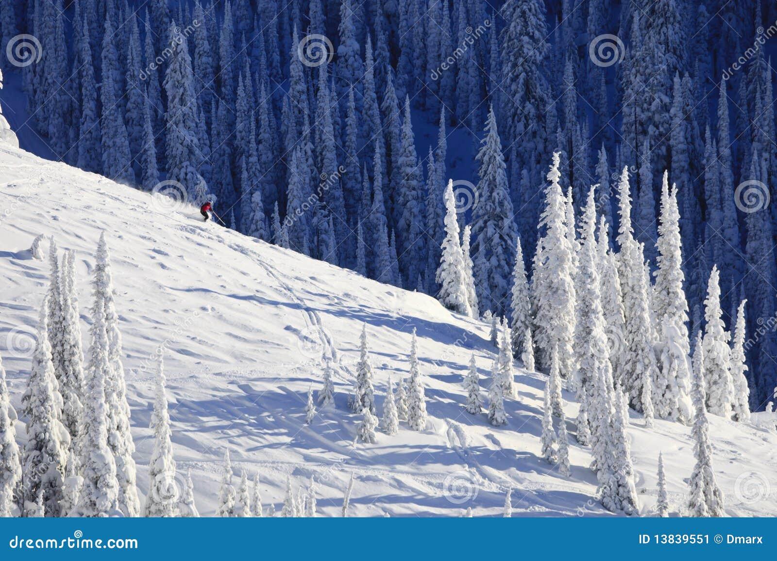 Sciatore sul fianco di una montagna innevato