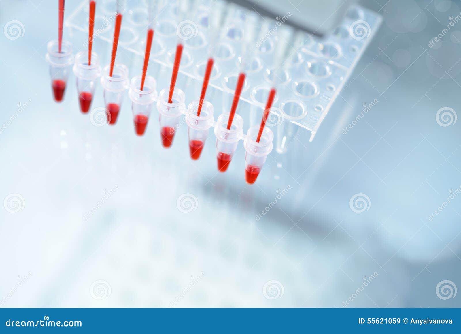 Wisdom Panel Mixed Breed DNA Test Kit, Dog DNA Kit, Dog Dna samples ...