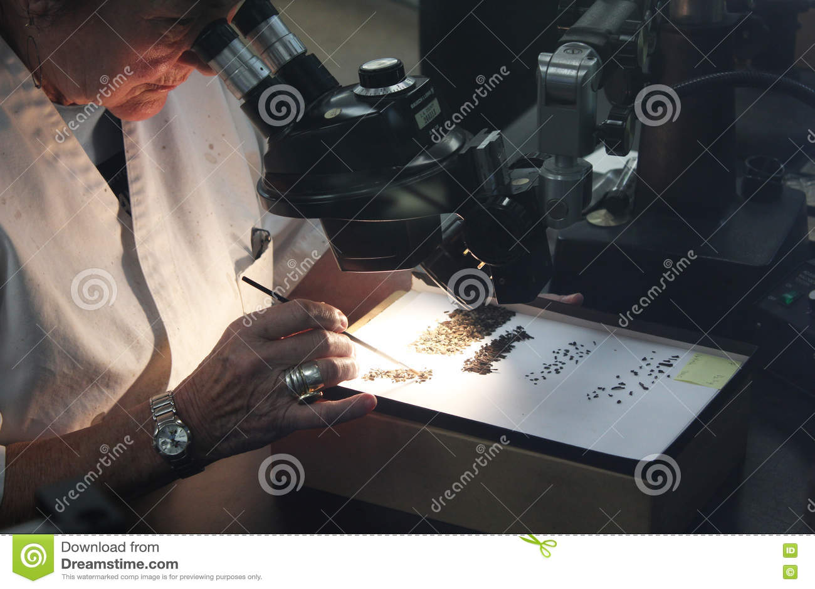 Scientifique de femme regardant par le microscope