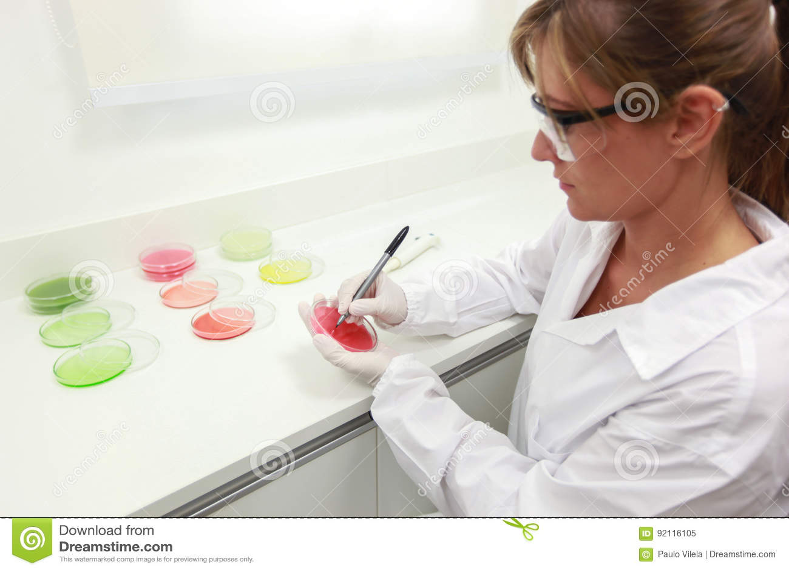 Scientifique féminin faisant l analyse bactérienne