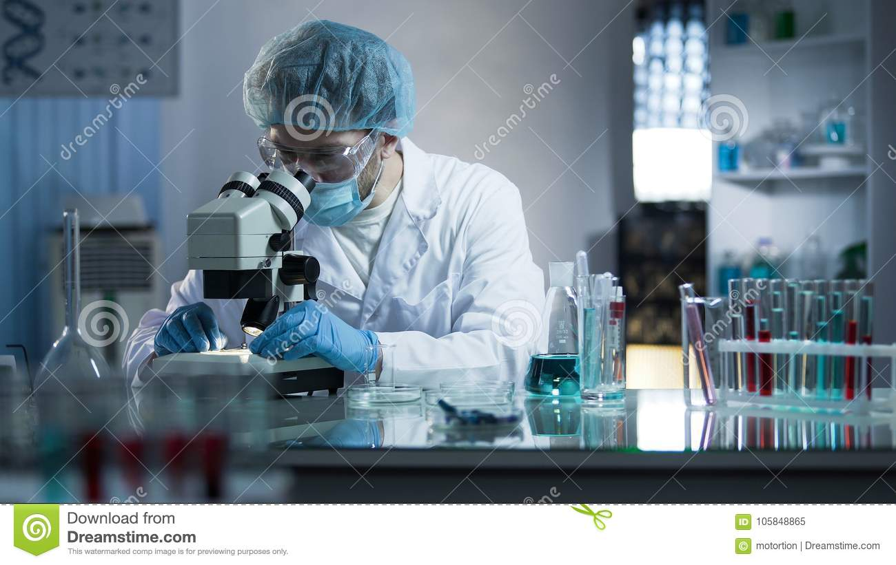 Scientist studying dna branches for additional information in cloning process