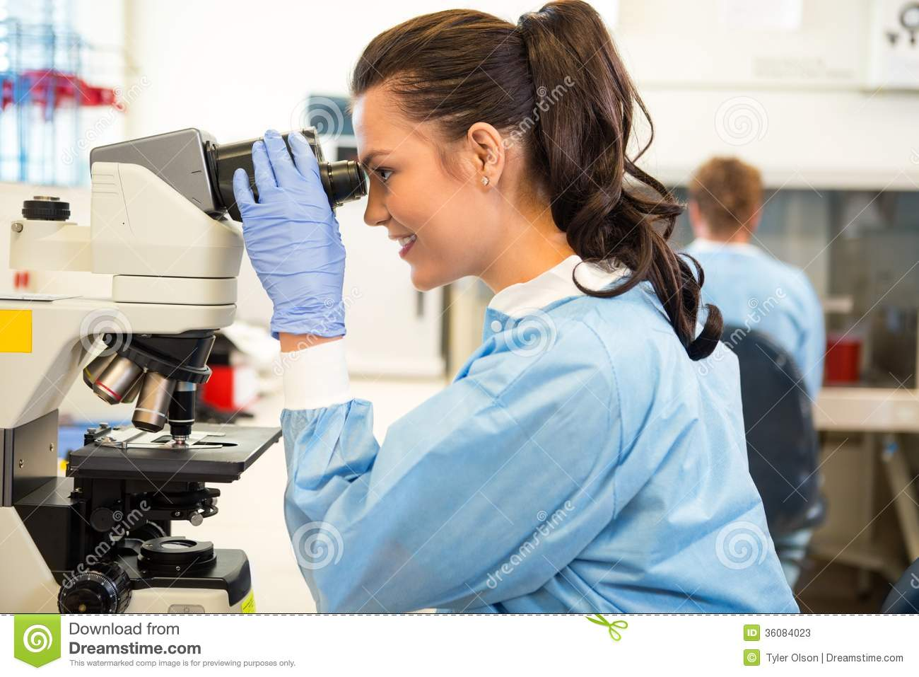 Scientist Using Microscope In Laboratory Stock Photos - Image ...