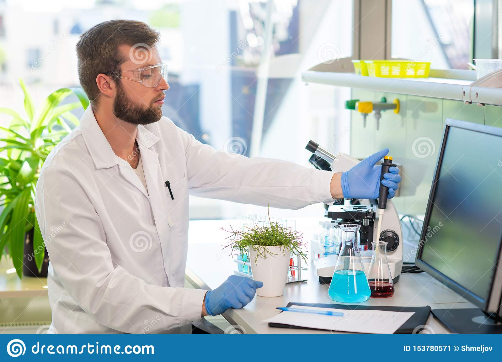 Scientist Working In Lab  Doctor Making Microbiology