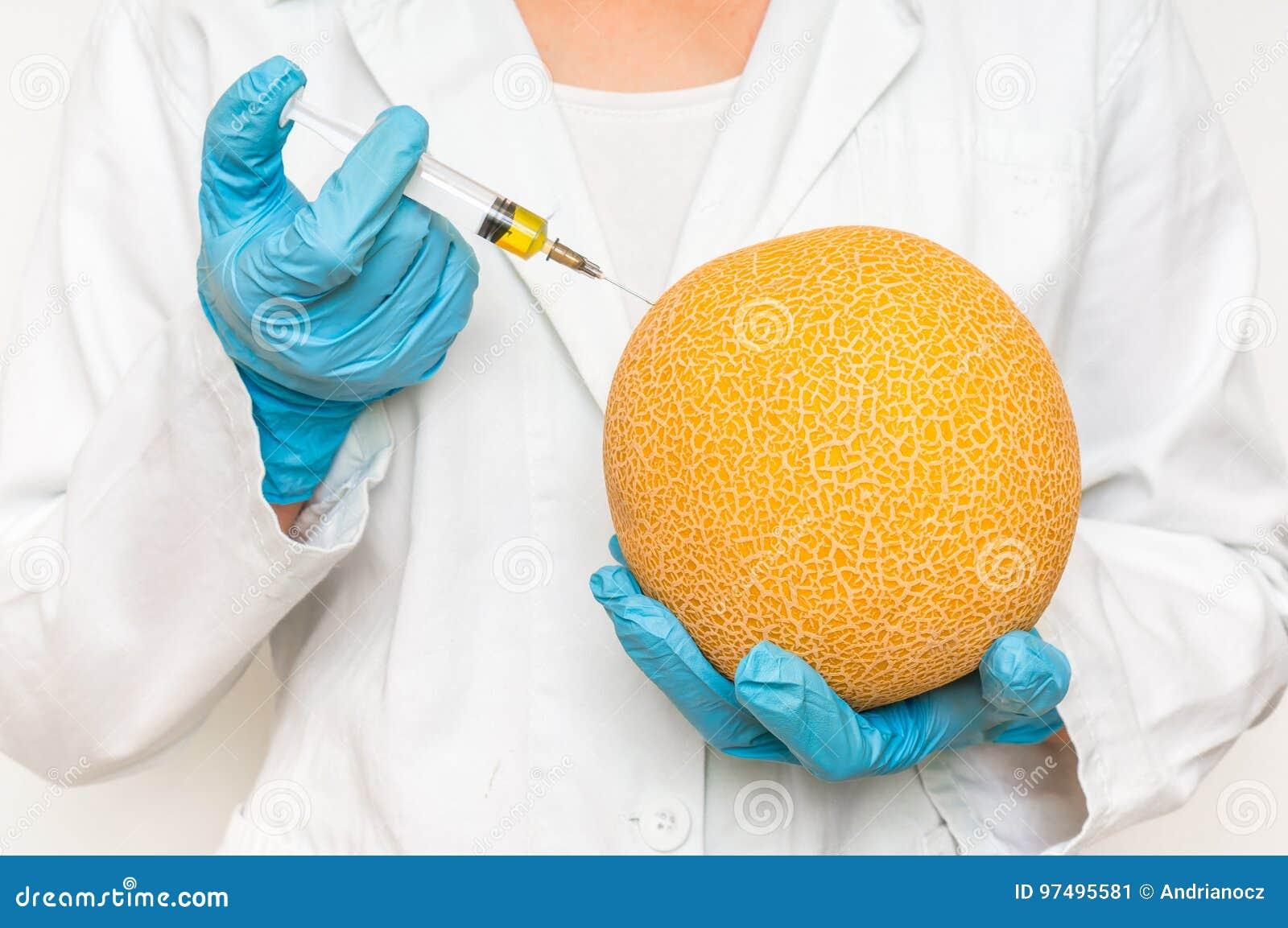 Scienziato OMG che inietta liquido dalla siringa nel melone giallo