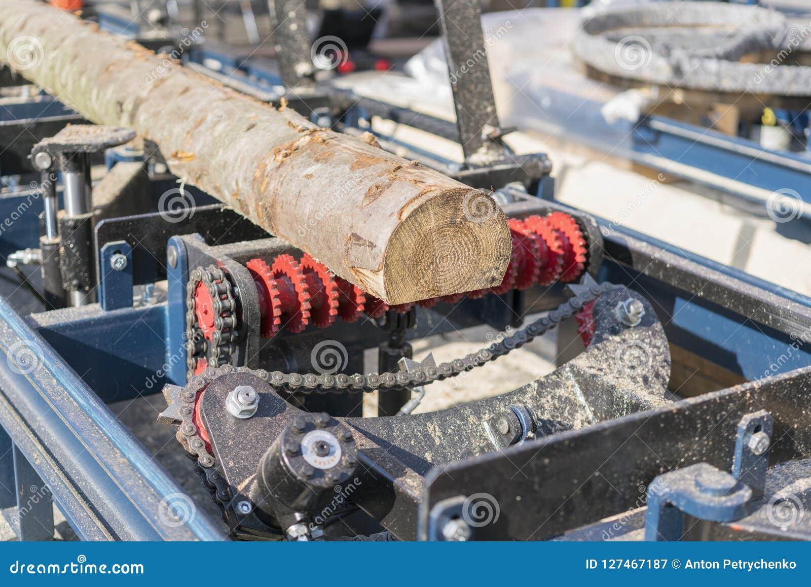 Scierie Le processus d usiner la machine de scierie d équipement d identifiez-vous a vu que des scies que le tronc d arbre sur la