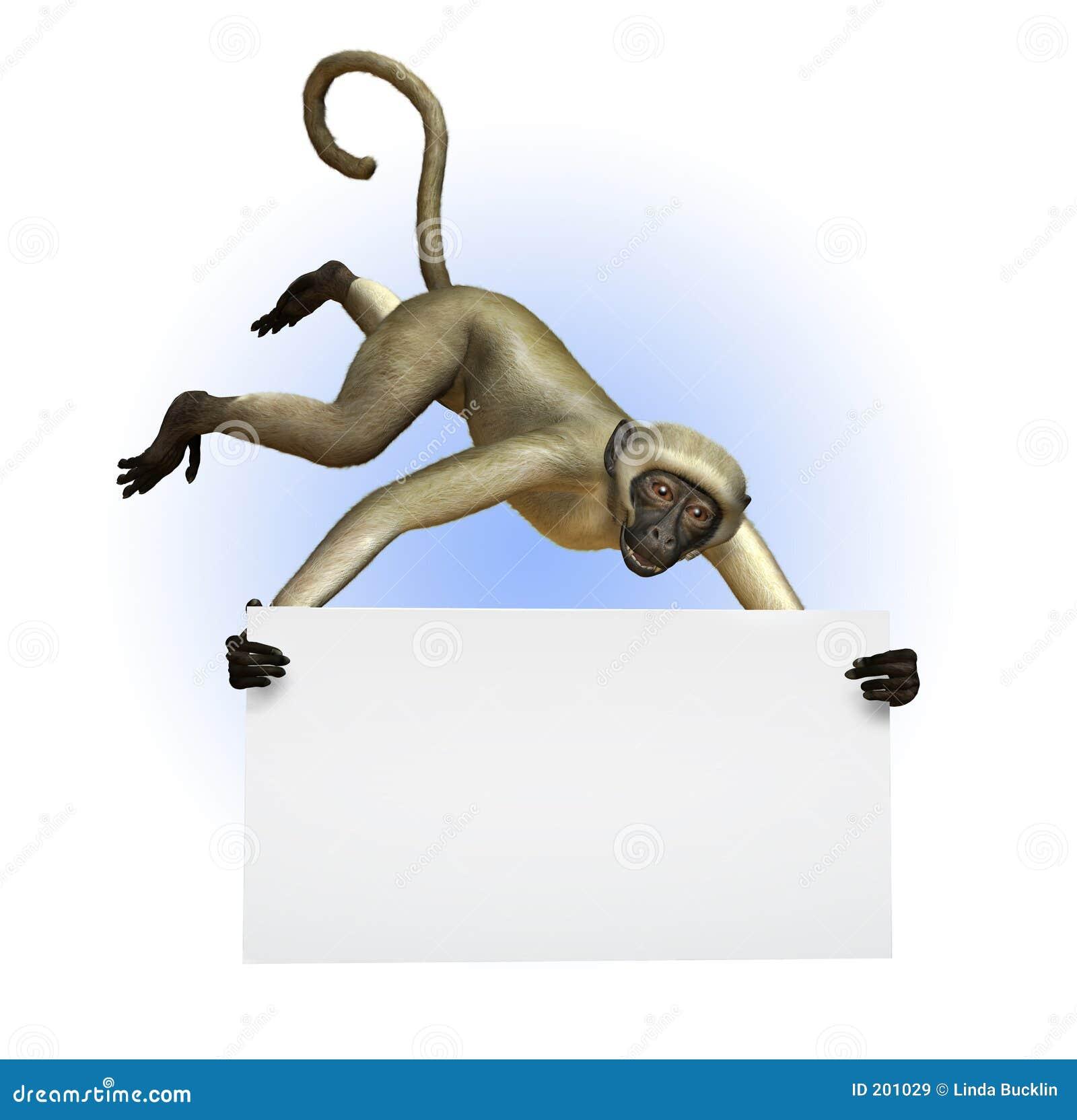 Scimmia che tiene un segno in bianco - include il percorso di residuo della potatura meccanica