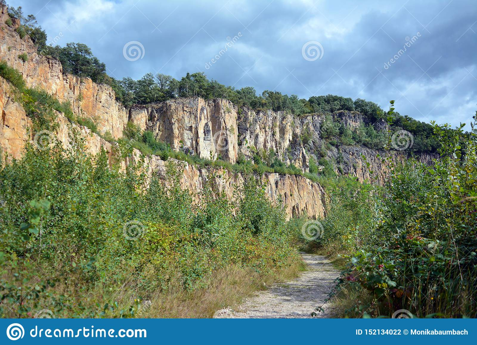 Scogliera a vecchio basso chiuso e ad arenaria invasa e pozzo della cava della riolite nella catena montuosa di Odenwald in Germa
