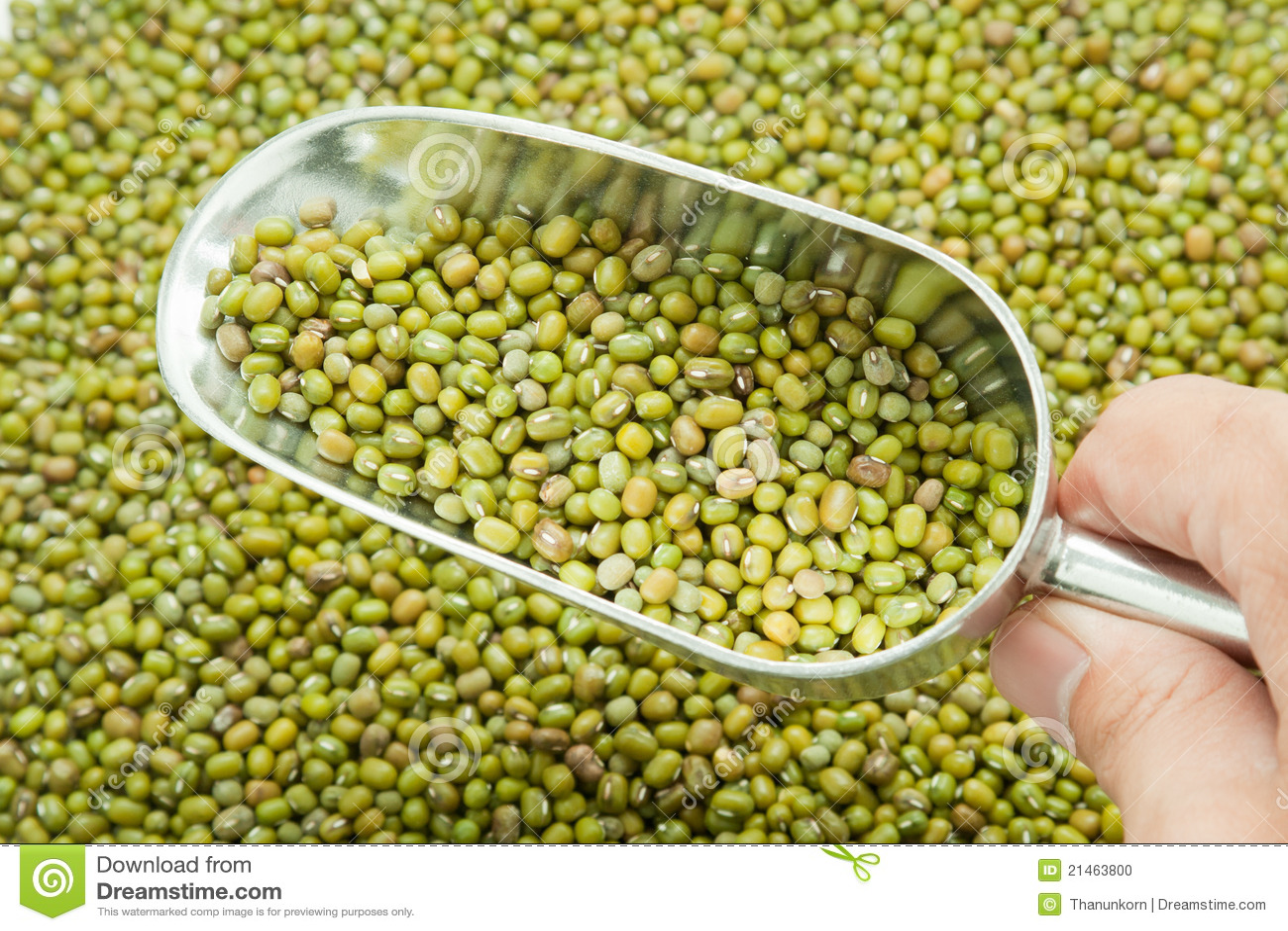 Scoop of greens