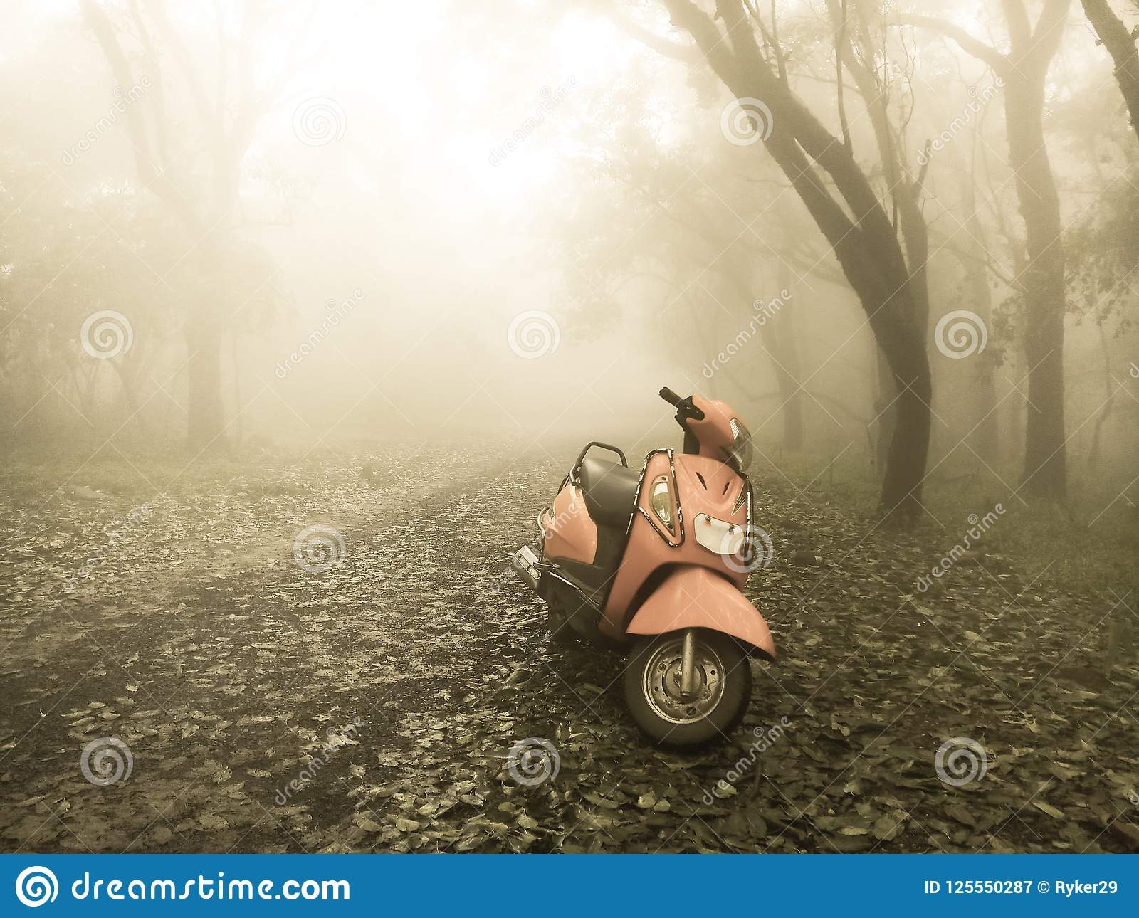 A scooter standing in nature in sepia