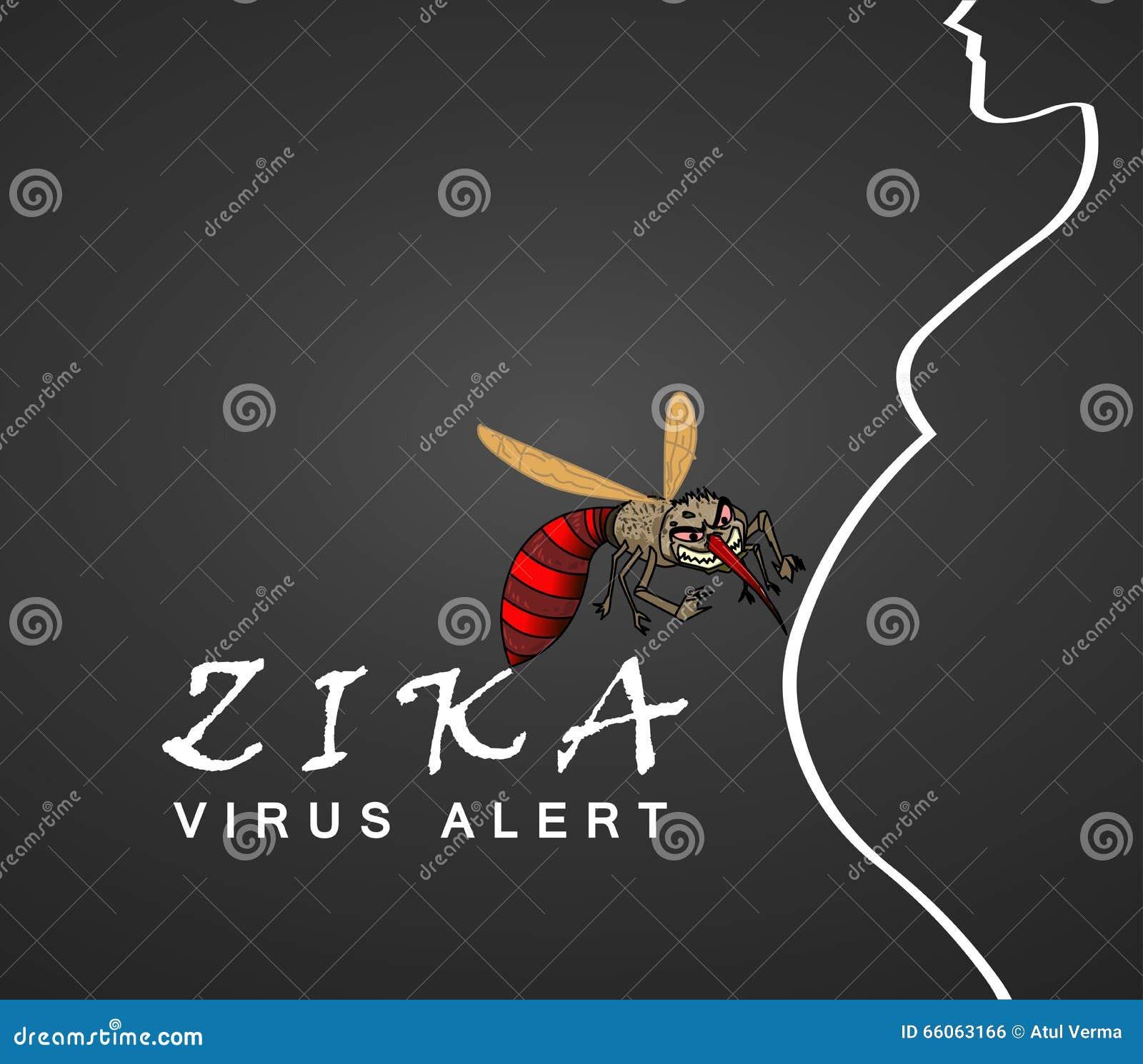 Scoppio ed allarme del virus di Zika Trasmesso da A la zanzara e di aegypti è collegata per causare la microcefalia sulle donne i