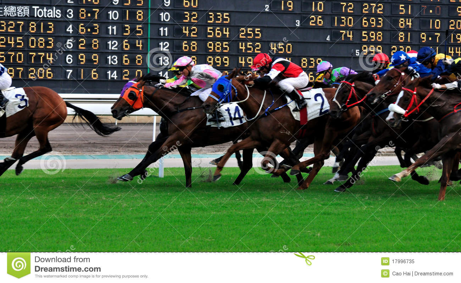 Score board of horse racing