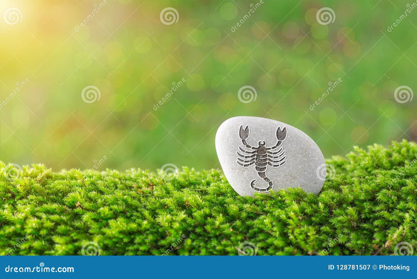 Scorpio zodiac symbol in stone