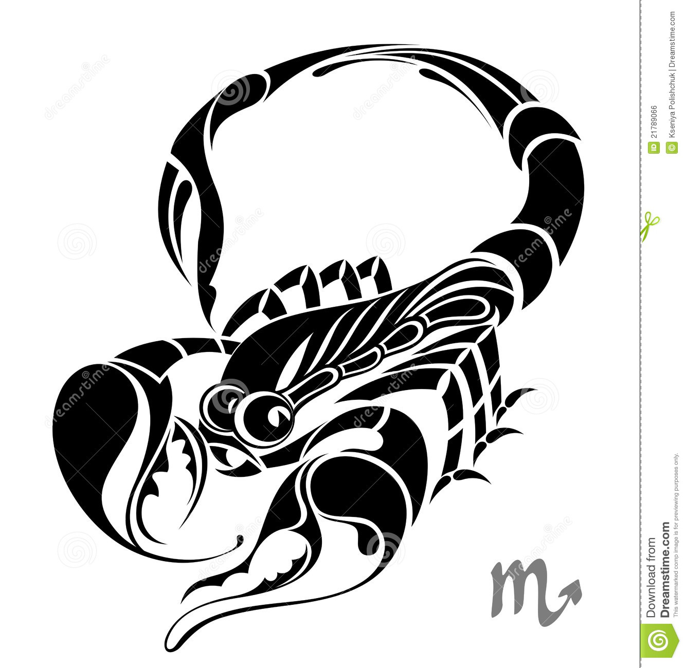 Tribal Horse Tattoos also Royalty Free Stock Image Scorpio Zodiac Vector Sign Tattoo Design Image21789066 besides Tribal Hawk Tattoo likewise Tribales Brazo likewise Watch. on simple scorpion drawing