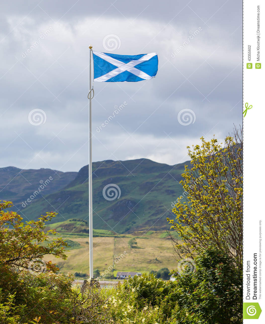 Scotland flag waving in the wind