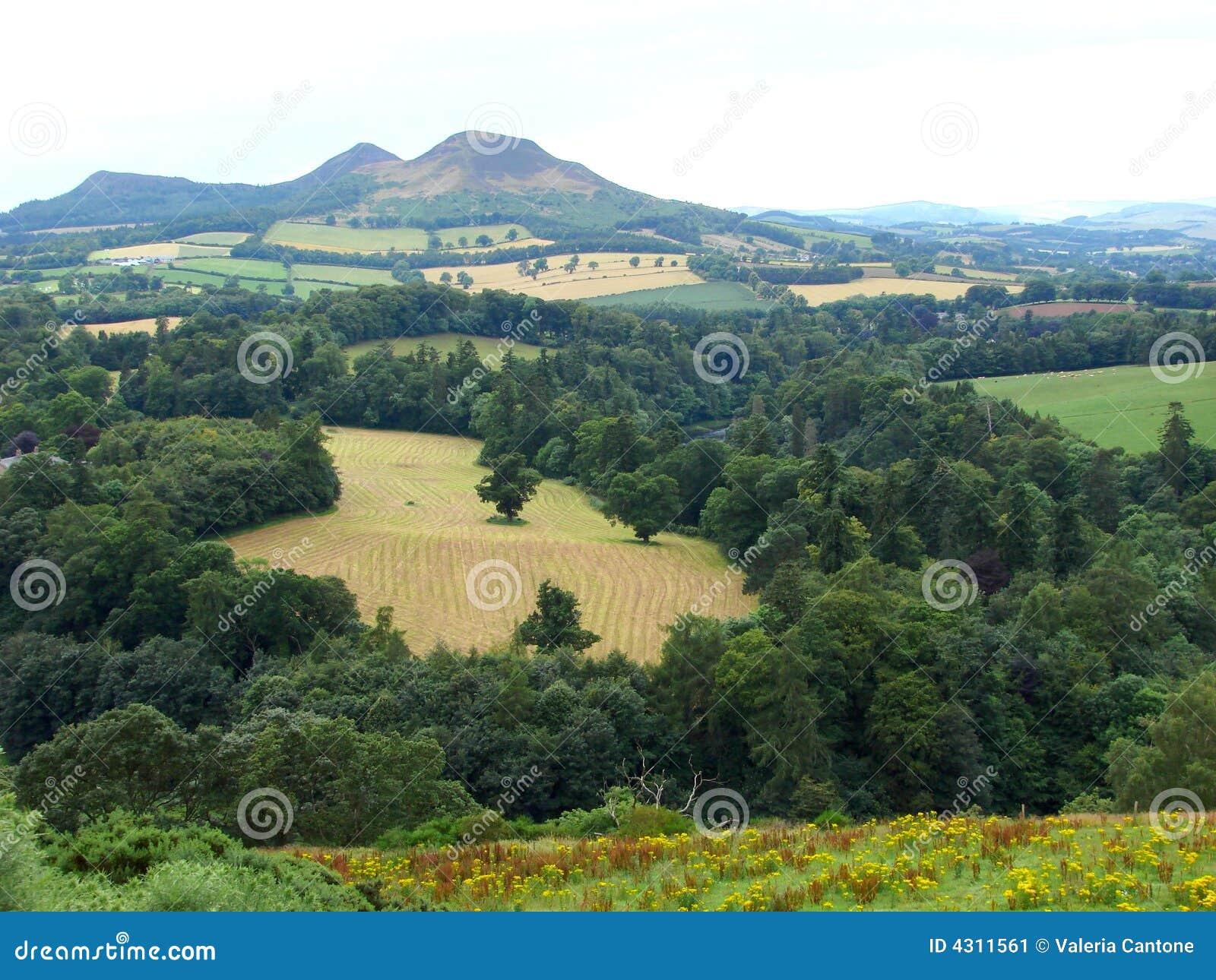 Scotland: Scott s view