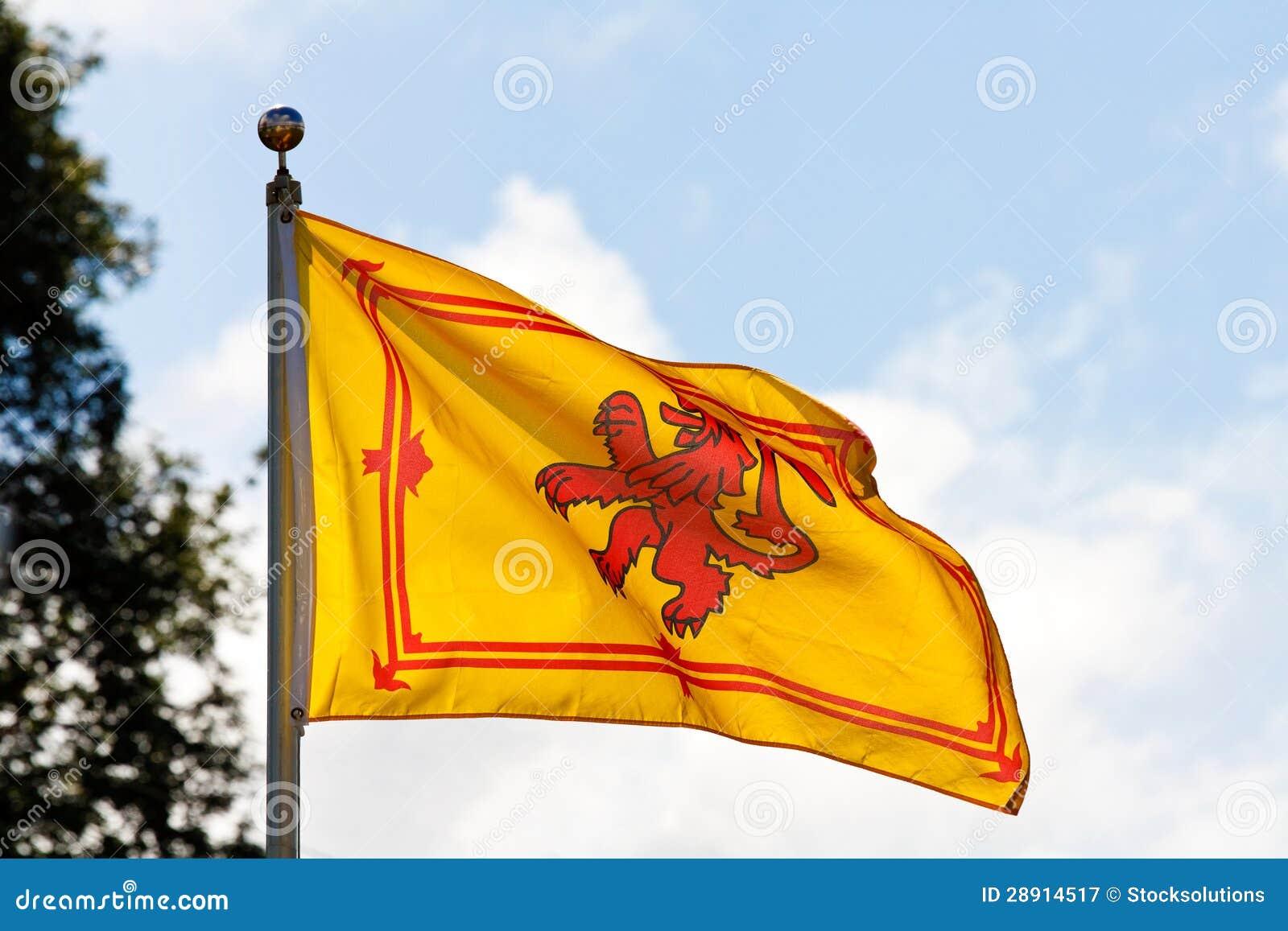 scottish flag the rampant lion royalty free stock photography