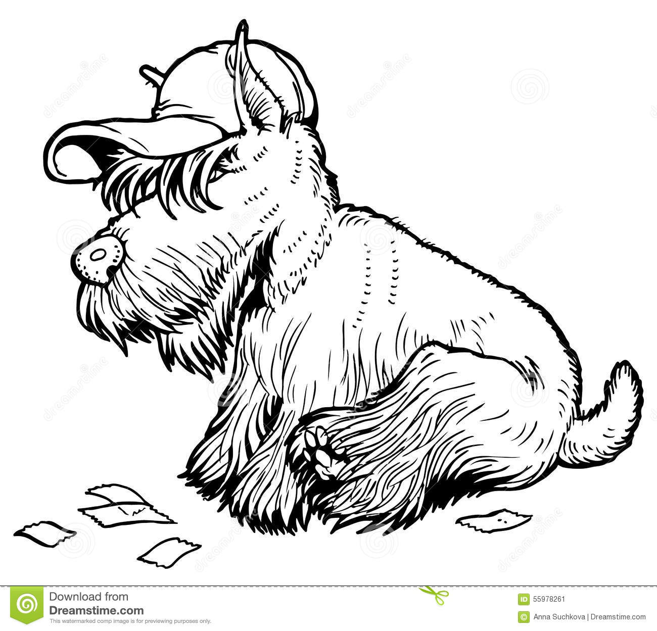 scottish terrier coloring pages - photo#24