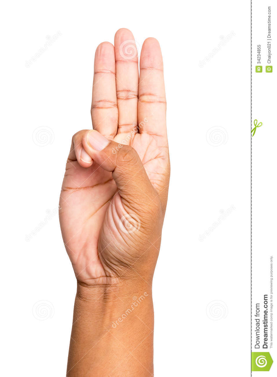 Scout Honor Hand Gesture Stock Image Image Of Sign Gesture 34234855