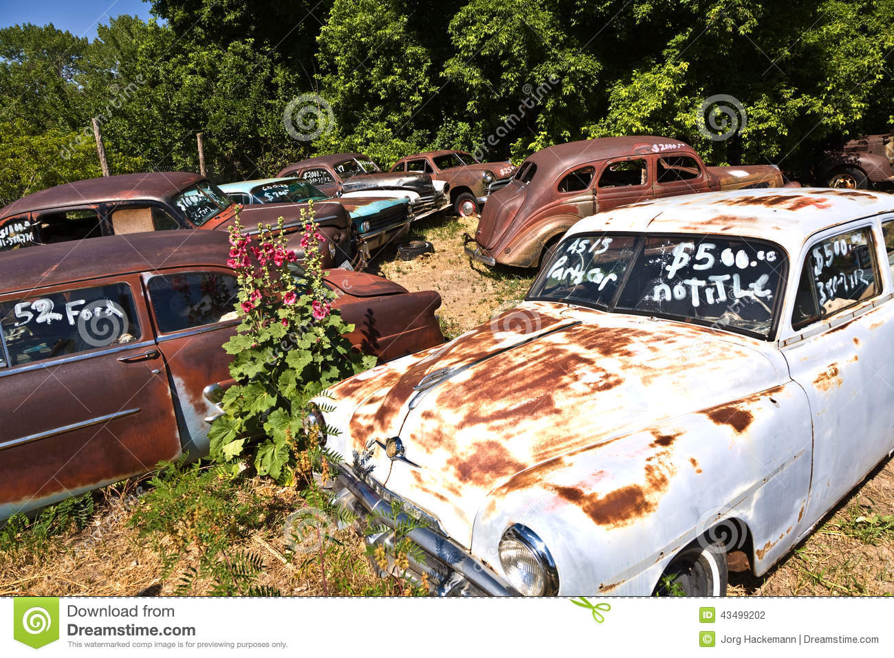 Scrapyard With Vintage Cars Editorial Photography - Image of ...