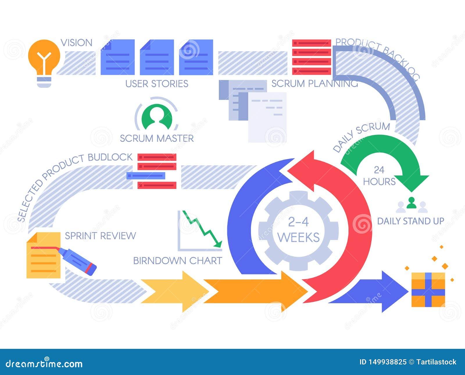 Agile Scrum Project Management Certification scrum agile process infographic. project management diagram