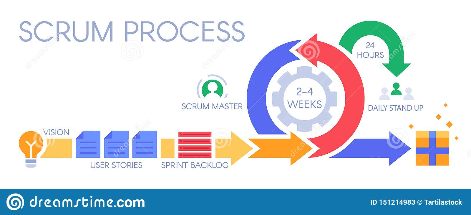 Agile Management scrum process infographic. agile development methodology