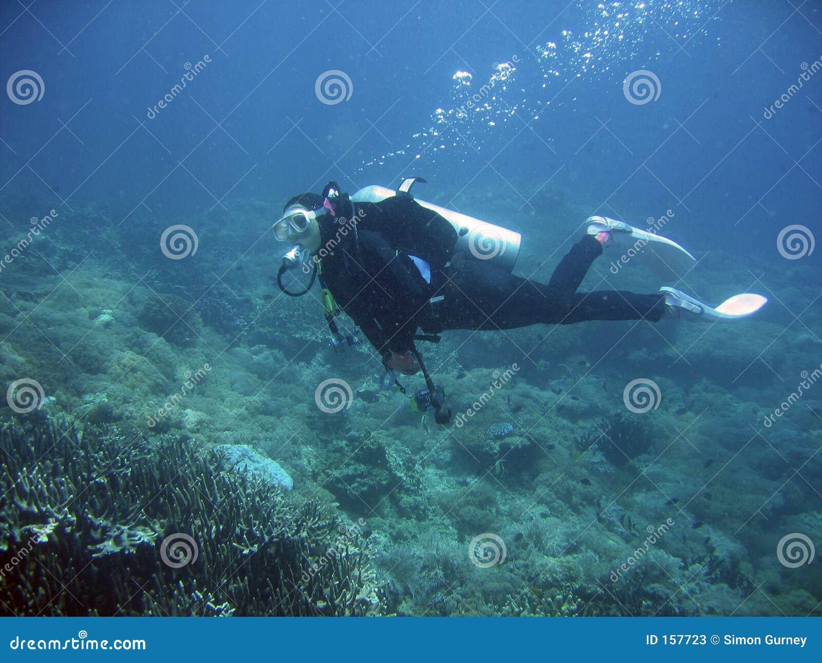 scuba diver explores coral reef philippines