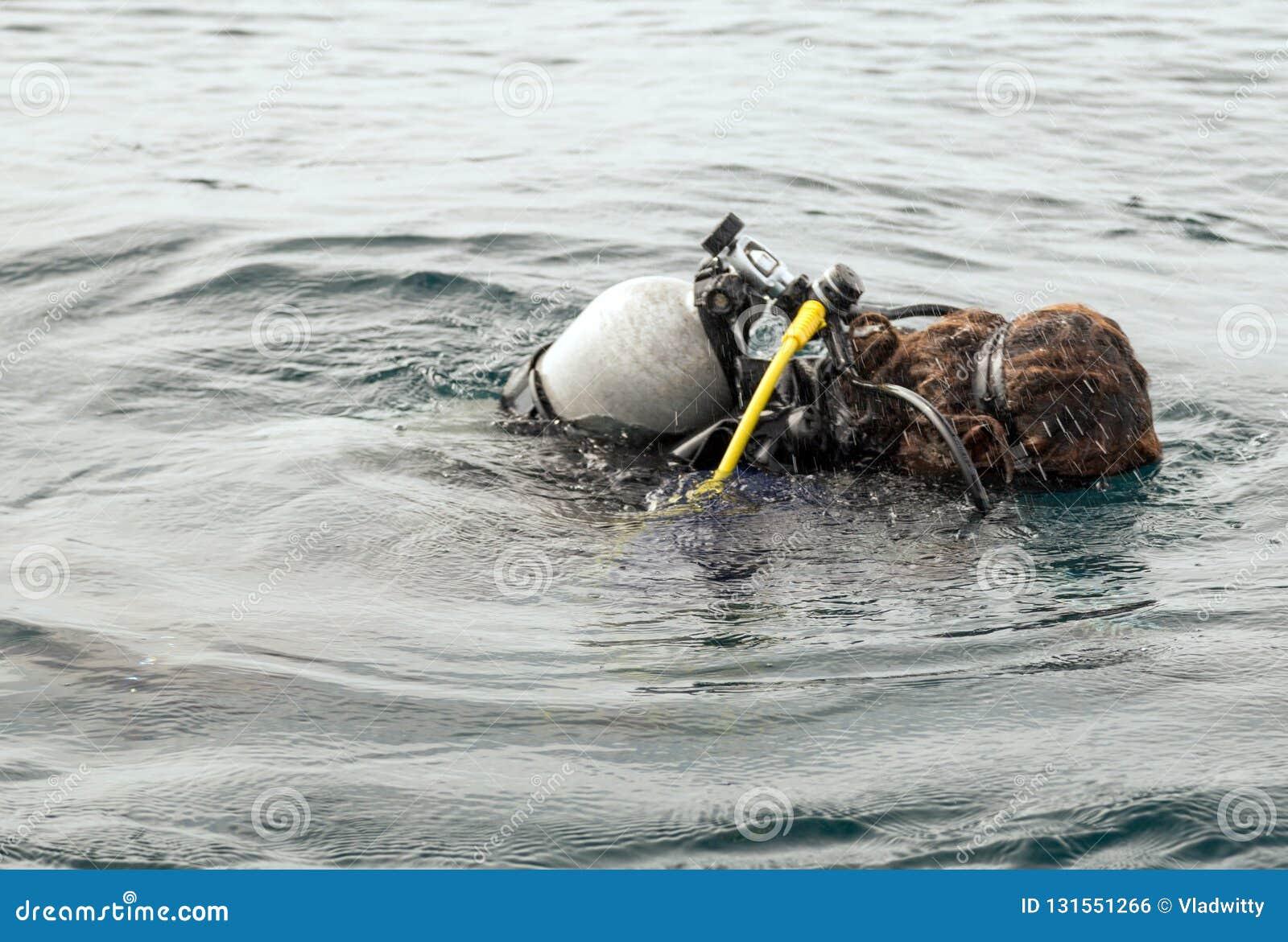 b0b169c3dd2f7a Oxigen tank Scuba Diver Swimming in wetsuit neoprene
