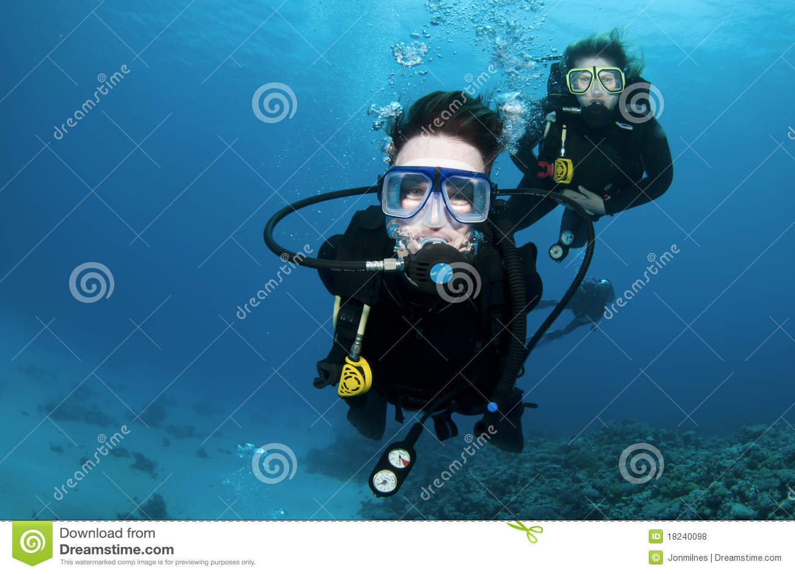 Scuba-duikers en koraal