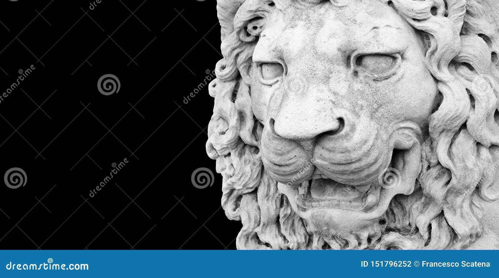 Sculpture d une tête médiévale de lion de l Italie en pierre - image avec l espace de copie d isolement sur le fond noir pour la