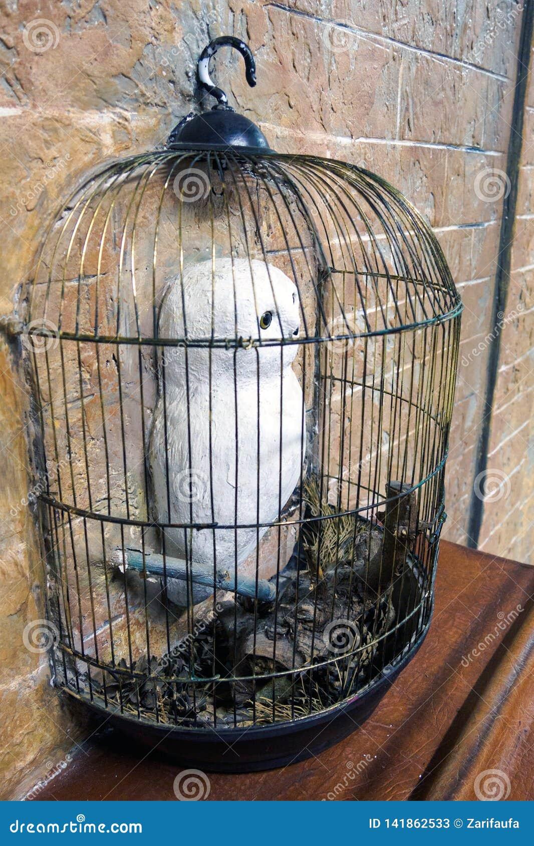 Sculpture de hibou neigeux de Harry Potter dans la cage dans le mur