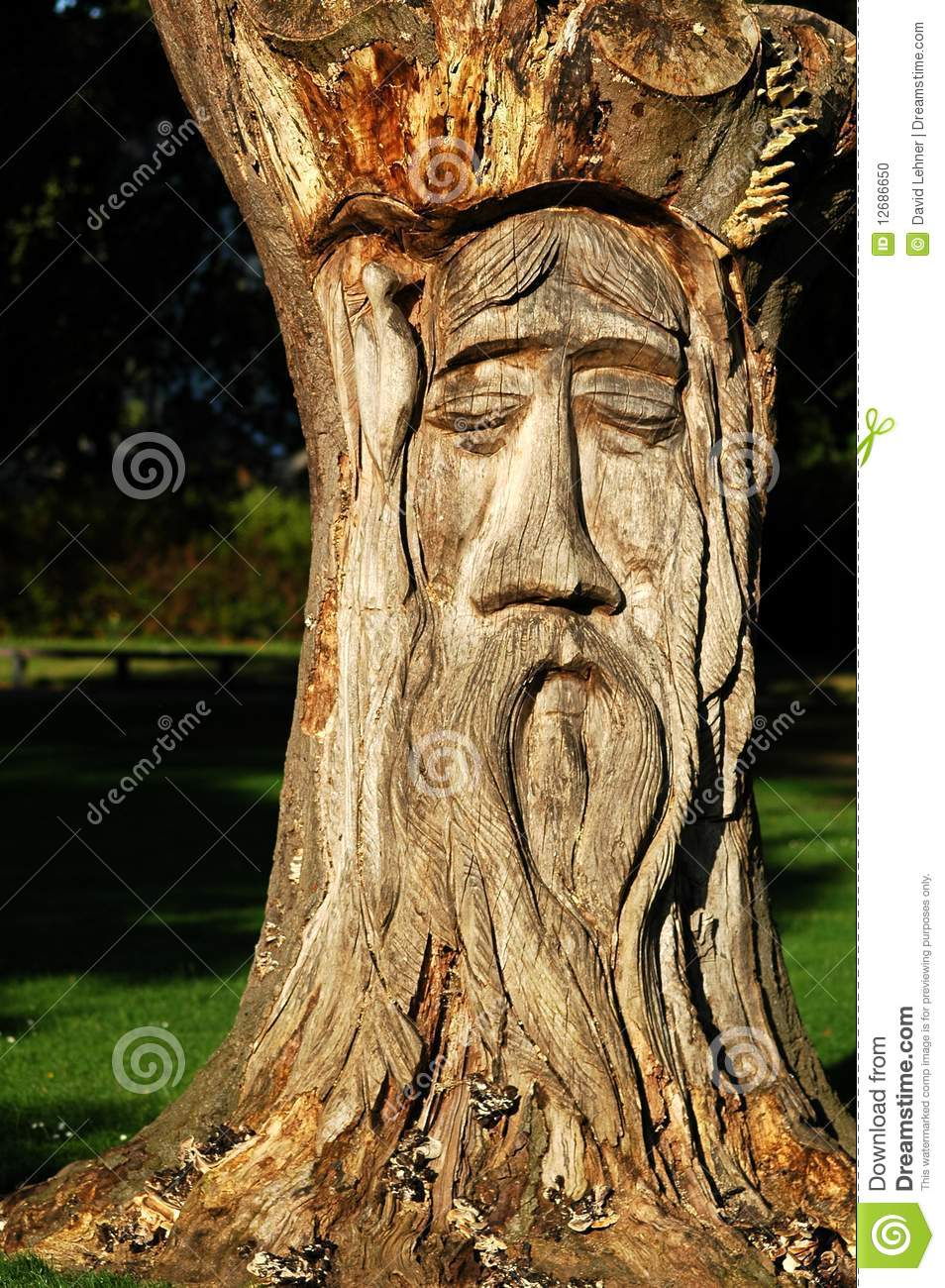 sculpture en bois en arbre photo stock image du visage 12686650. Black Bedroom Furniture Sets. Home Design Ideas