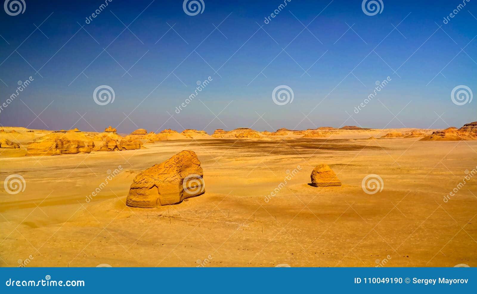 Sculpture en nature en vallée de baleines de Wadi Al-Hitan aka en Egypte