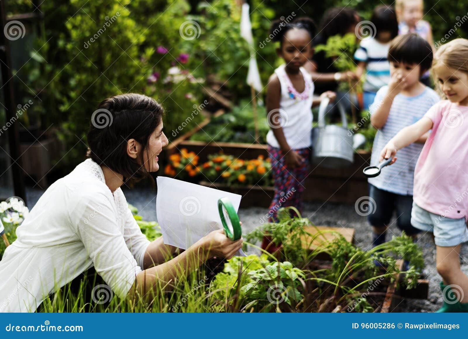 Scuola dei bambini e dell insegnante che impara giardinaggio di ecologia