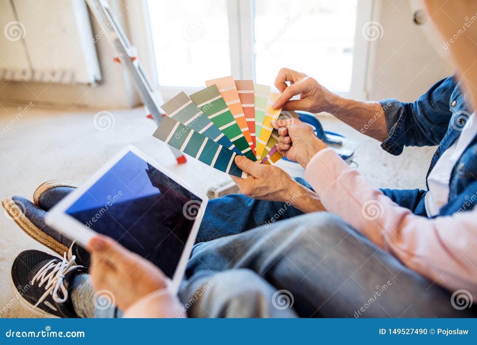 Se??o mestra de pares superiores com casa nova da pintura da amostra de folha da cor, conceito do internamento