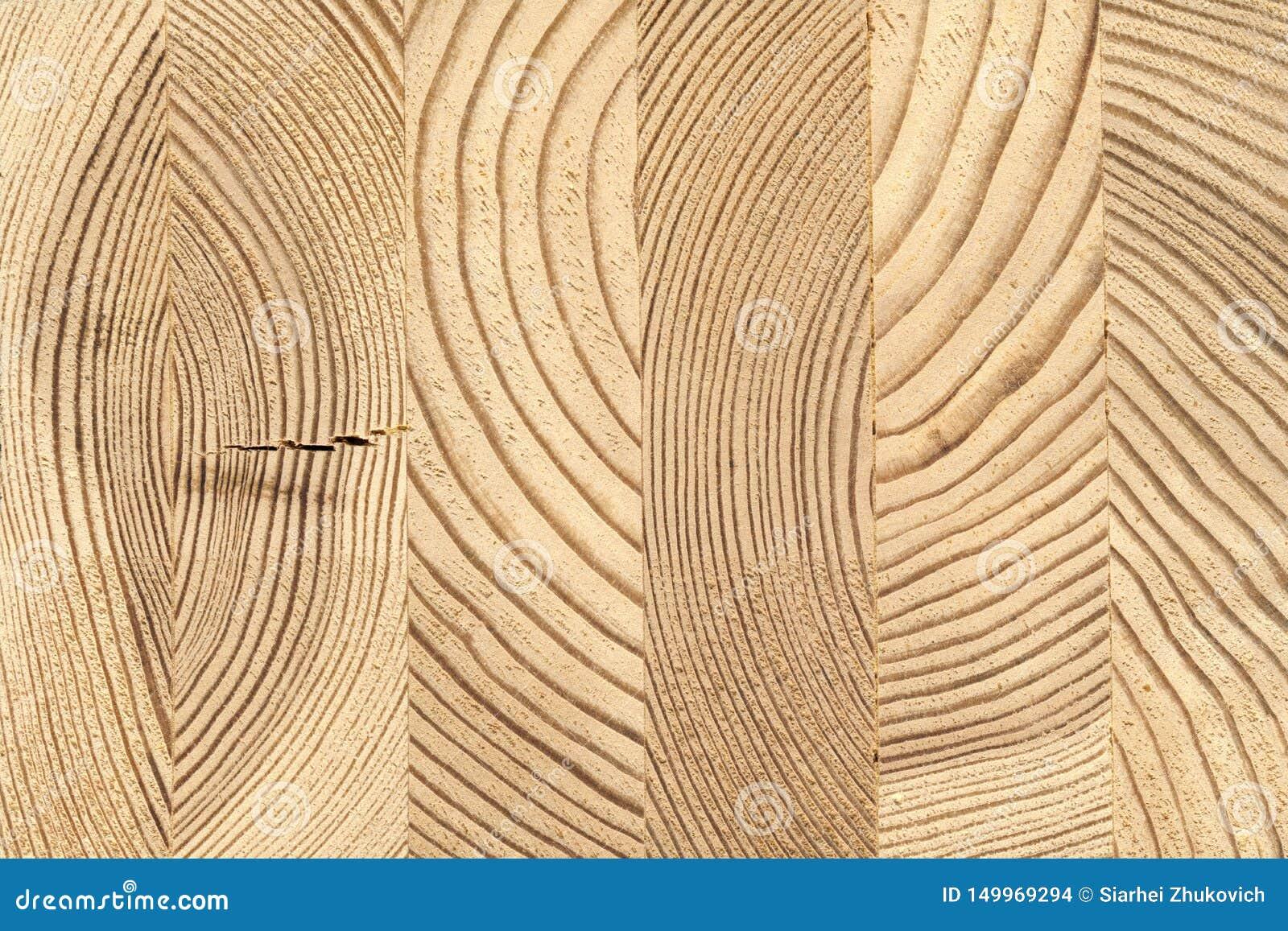 Seção transversal da madeira de madeira colada do pinho