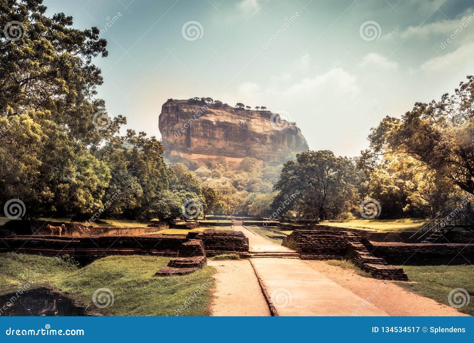 Señal Sri Lanka de la UNESCO de la montaña de la roca del león de Sigiriya