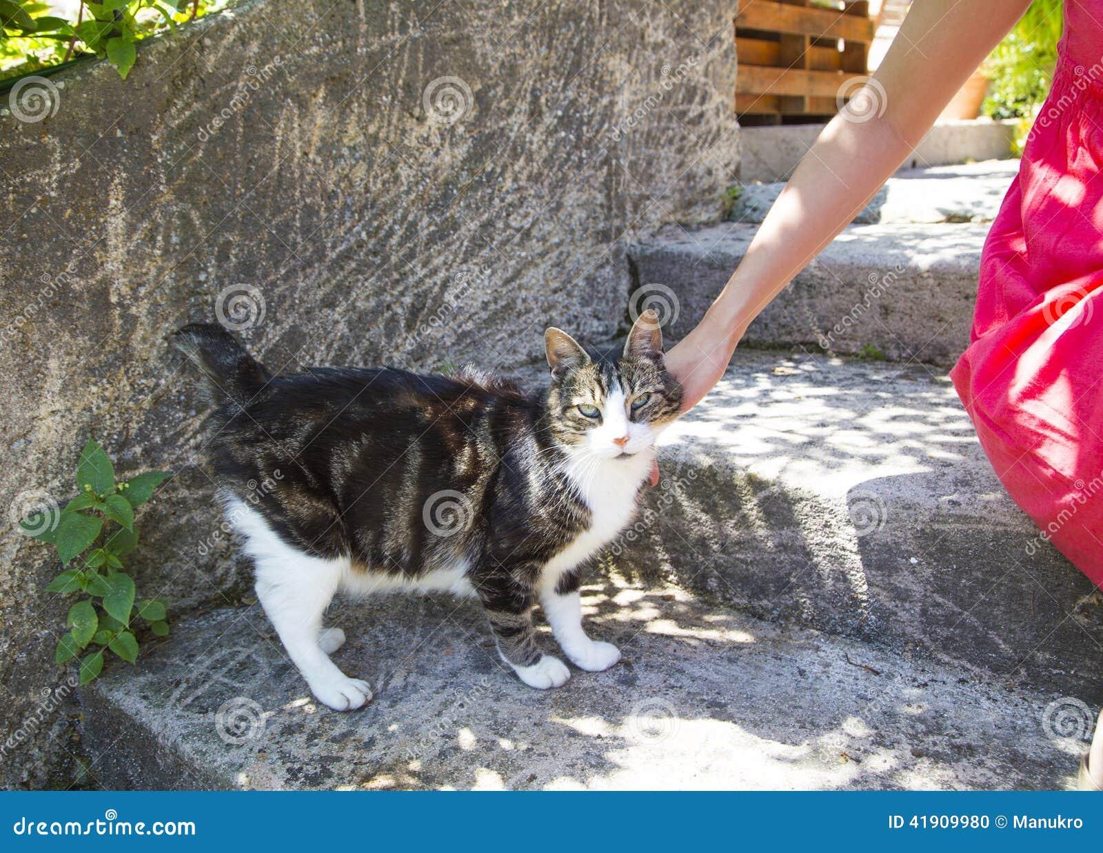 Señora que abraza suavemente el gato