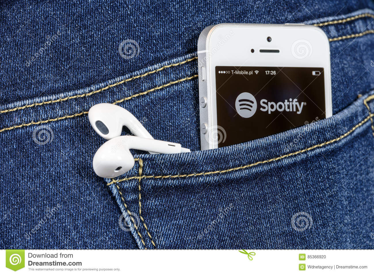 how to download spotify videos