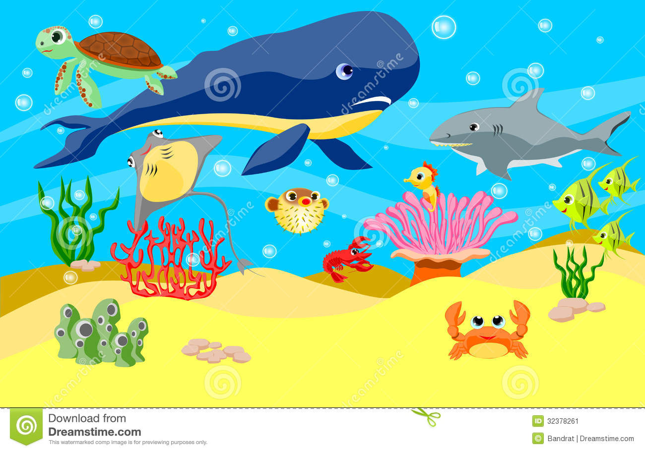 sea animals background stock image image 32378261