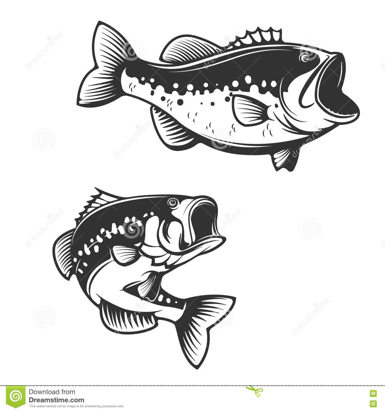 Background image e - Sea Bass Fish Silhouettes Isolated On White Background Design E Stock Vector